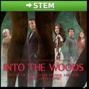 Stem op Into the woods voor de AD publieksprijs